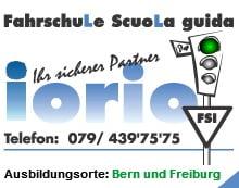 Logo der Fahrschule Iorio